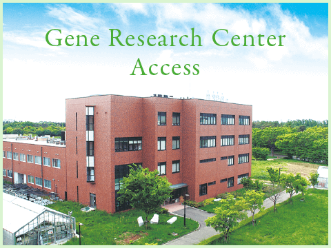 contact-access|Gene Research Center